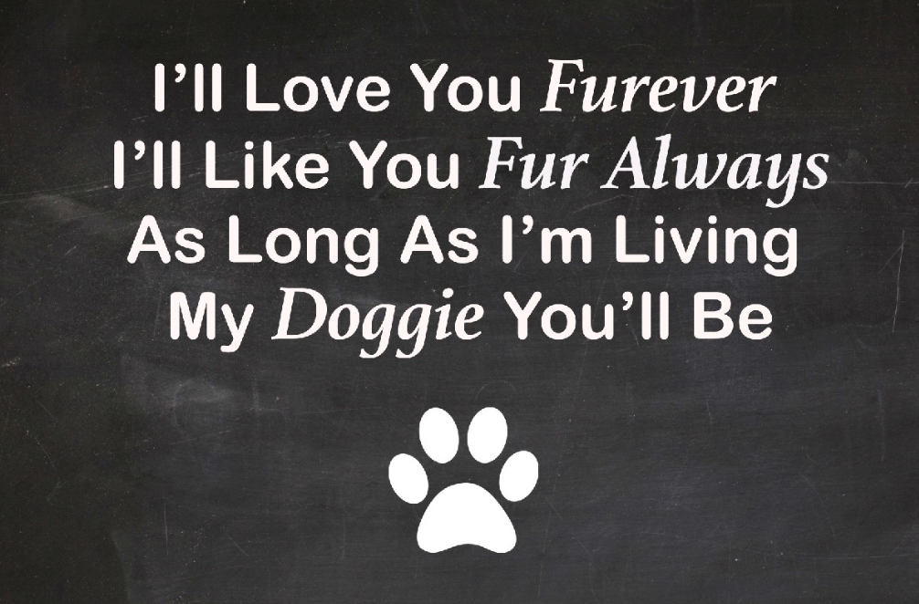Beautiful-Dog-Quote