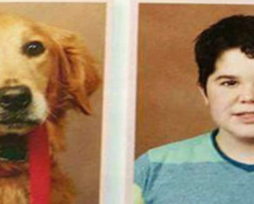 Dog gets yearbook photo